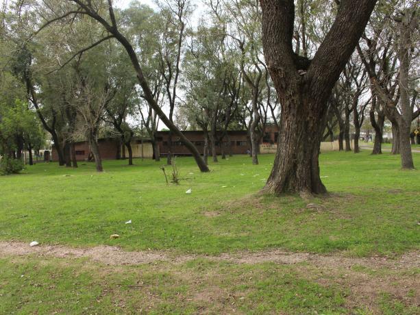 Propuesta: Tu cancha, espacio polideportivo Sacude.
