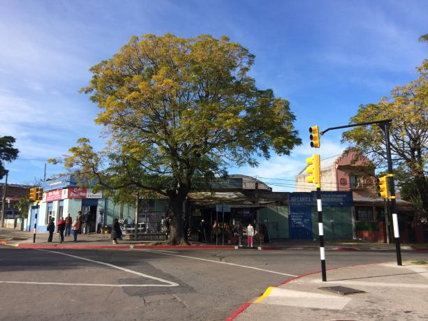 Inauguración de semáforos en Burgues y Santa Ana