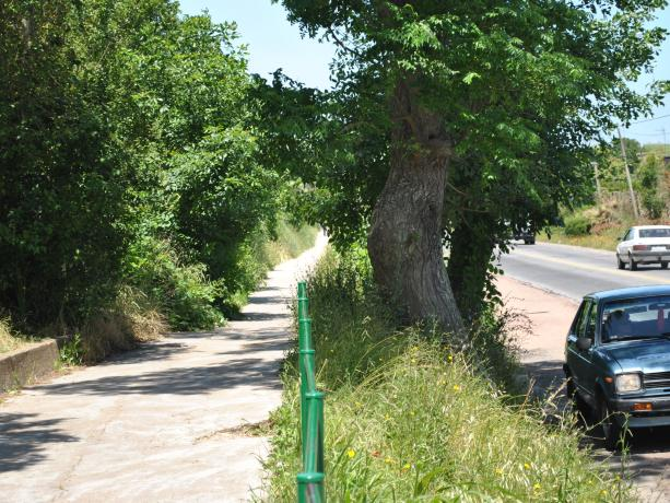 Senda peatonal en Escuela de Llamas