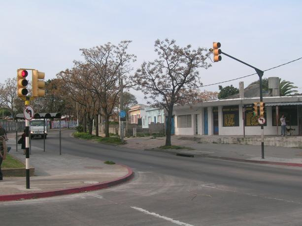 Semáforos (Seguridad Vial para la calle Piccioli)