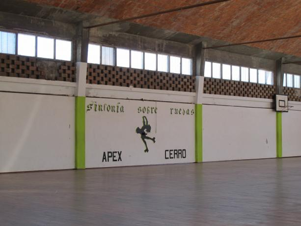 Polideportivo Apex