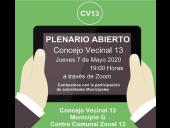 Plenario abierto Concejo Vecinal 13
