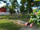 Recuperando Plazas en Peñarol